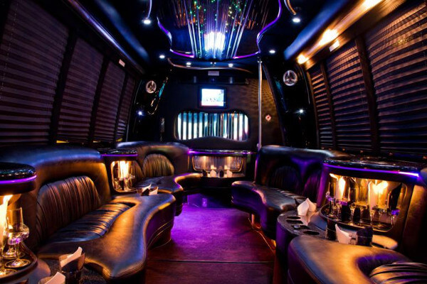 15 Person Party Bus Rental Los Angeles